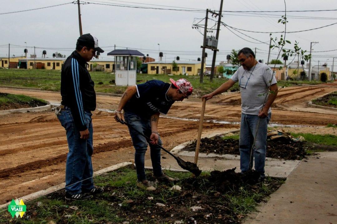 Más plantaciones en Hábitat